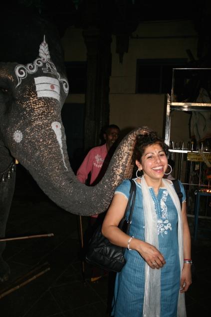 Elefant velsigner