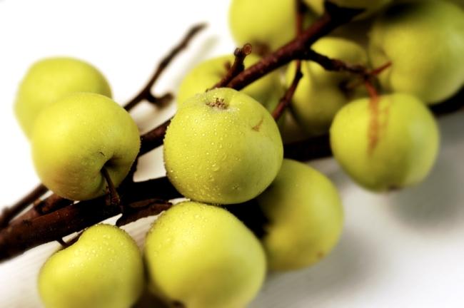 EPLER Apples